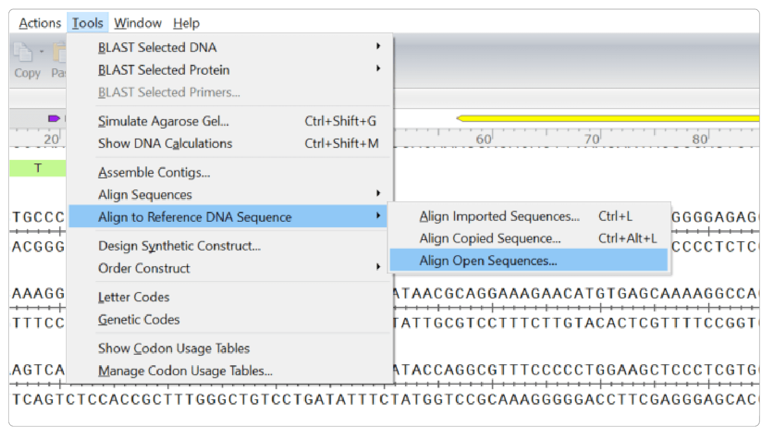Figure 6: SnapGene Screen Capture showing Align sequence tools