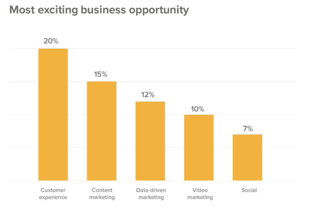 chart of business opportunities