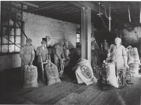 Old gray and white picture of men filling grain bags