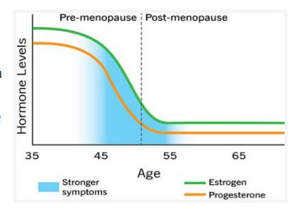 ilustracja menopauza