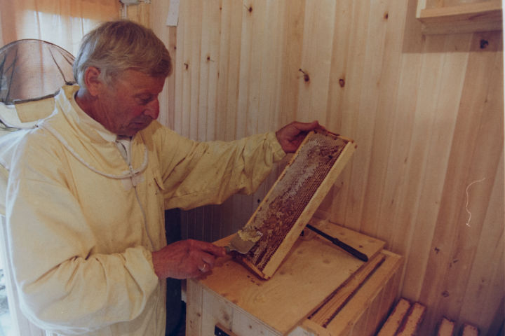 Honey making