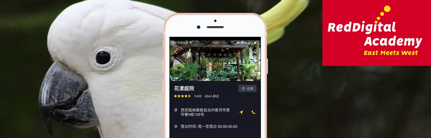 Parrot brings 60000 followers to a small hotel in China with Douyin (TikTok)?  hero image