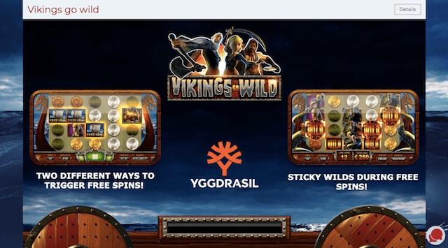Vikings Go Wild Features
