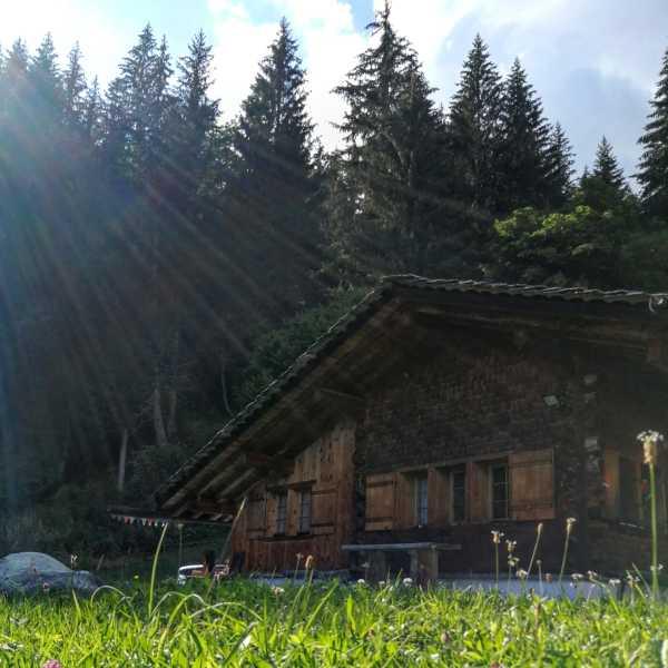 a day at the alpine hut Maiensässtag