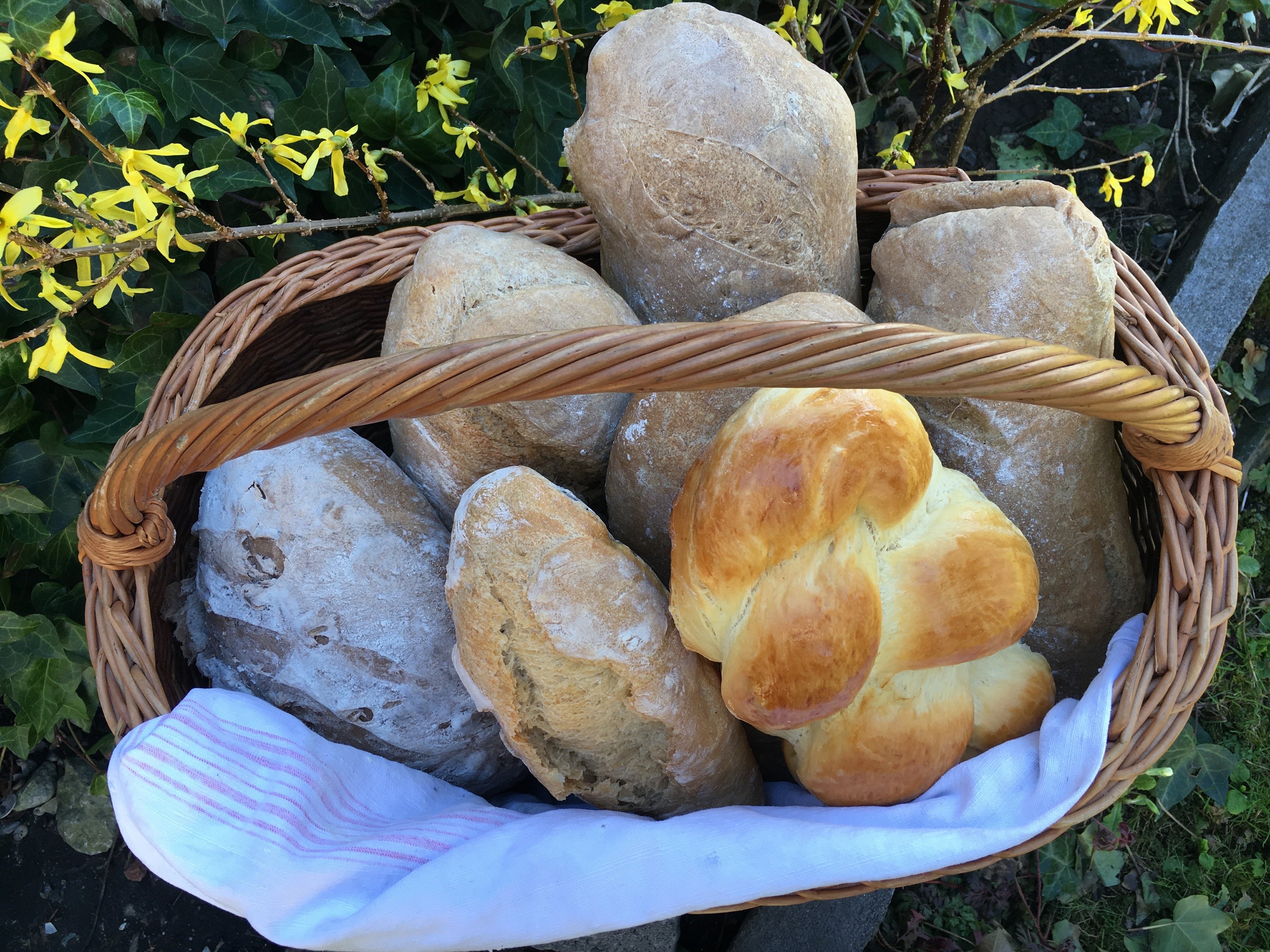 Brotbacken in Laax
