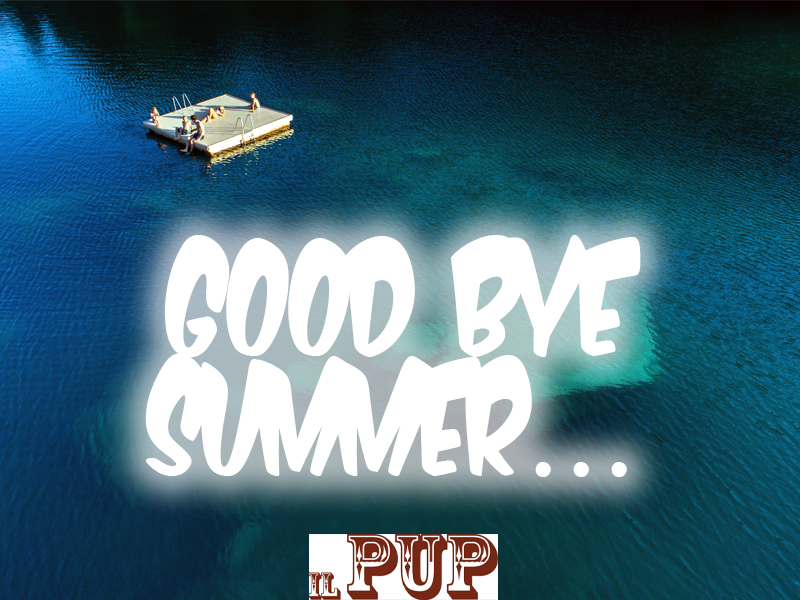 Good Bye Summer Party