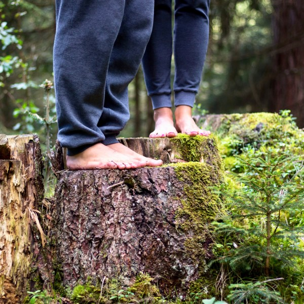 Yoga, Qi Gong & Forest Bathing in Flims