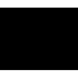 Vito Ventures logo