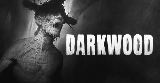 Video game Darkwood