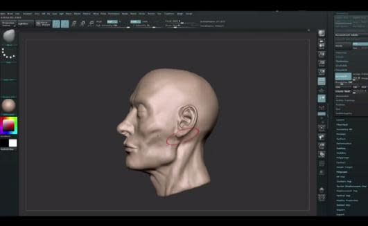 ZBrush Tutorials How to Build Facial Muscles and Facial Features with ZBrush -1