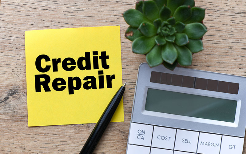 Why You Should Use A Professional Credit Repair Company