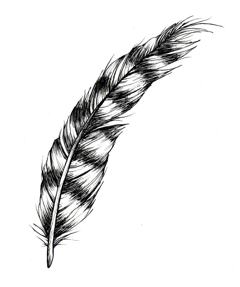 Cover Image for FEATHER