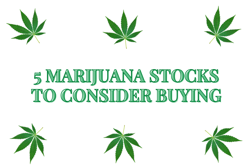 5 Marijuana Stocks to Consider Buying