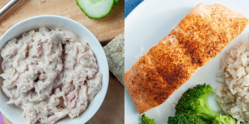 Macrostax Tuna vs. Salmon