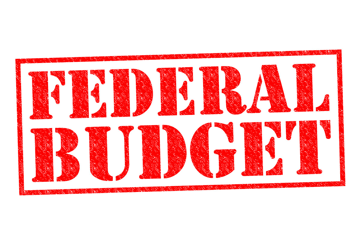 FEDERAL BUDGET red Rubber Stamp over a white background