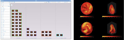 zegami-medical-imaging