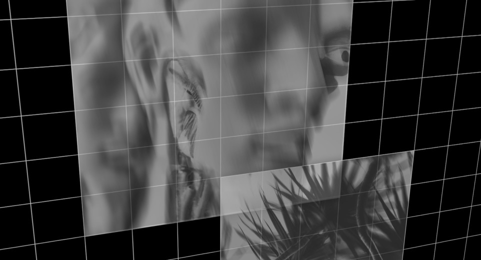 Greyscale images of a distorted 3d modeled face and plants against a black and white grid