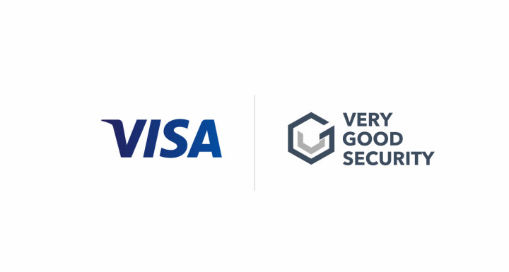 visa-vgs-investment