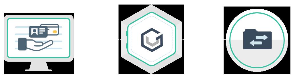 The VGS Platform
