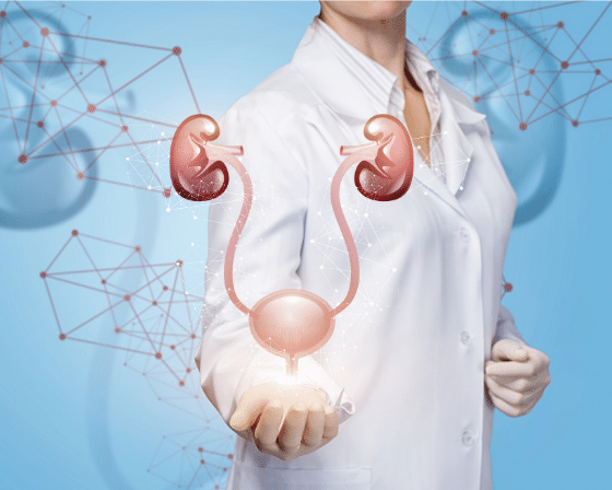 Nephrology & Urology- Consult Nephrologists Online