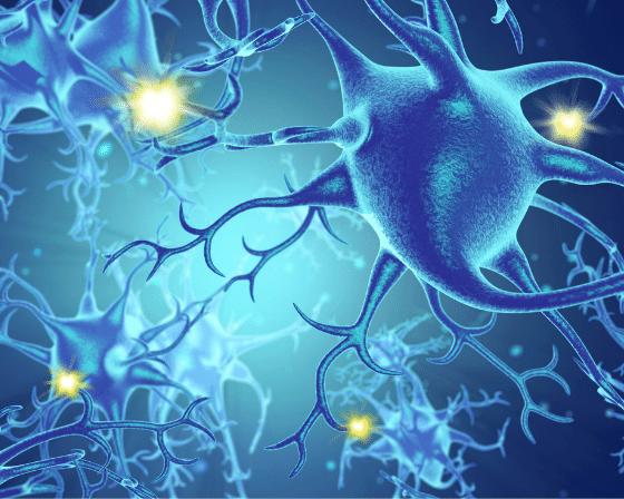 Spotting and Serving Signs of Nerve Damage