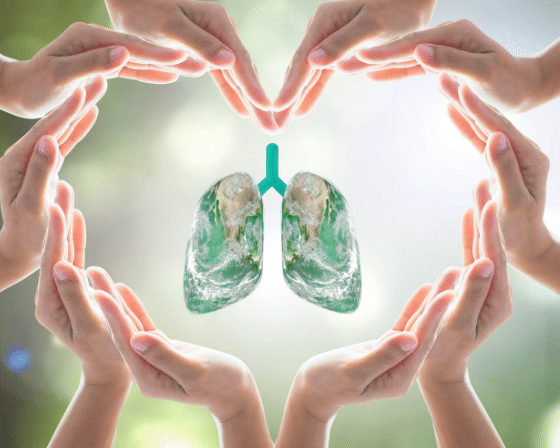 Respiratory System, Lungs and Pulmonology