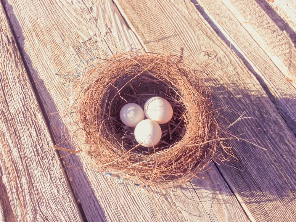 A bird's nest with three white eggs in it.