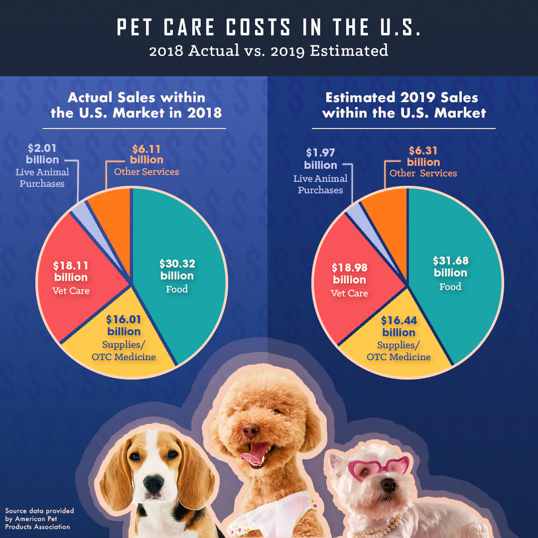 How Much Does A Vet Cost For Dog