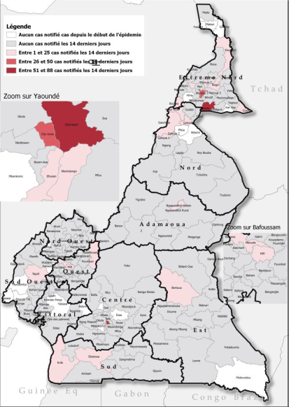 Attack rate per health district in Cameroon