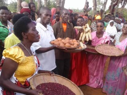Membres des Champs Ecoles Producteurs montrant les résultats de l'expérimentation sur le haricot