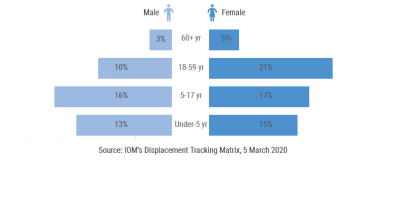 Number of IDPs in UNMISS Adjacent Area in Pibor town by sex and age.