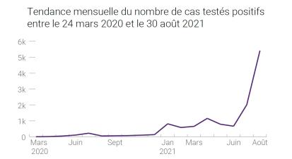 Tendance mensuelle du nombre de cas testés positifs entre le 24 mars 2020 et le 30 août 2021