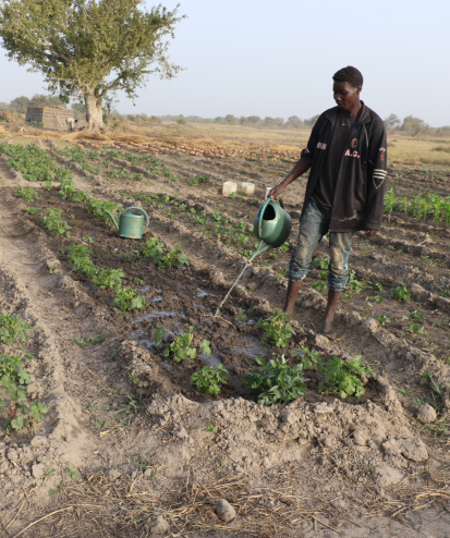 "Ousmane has named his garden ""Perseverance"". Many of his friends gave up the work because of lack of water or similar challenges, but Ousmane insisted and grew his crops. OCHA/Virginie Bero, Birao, Vakaga Prefecture, CAR, 2021."