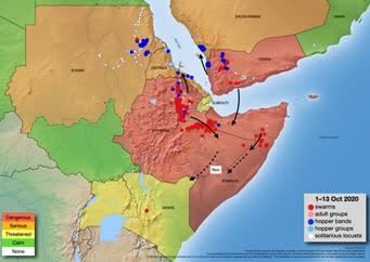 Desert locust situation in Somalia. Source: FAO.