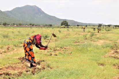 Community forest project in Djoukoulkouli