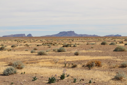 Nord du Tchad