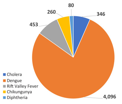 Breakdown of disease outbreaks in Sudan
