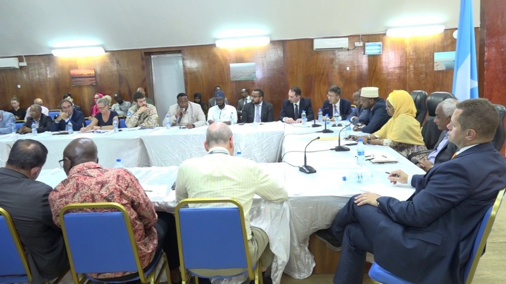 Emergency coordination meeting on covid-19 in Mogadishu. Photo: MoH                                                                 Desert locusts in the Horn of Africa. Video: FAO