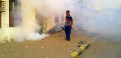 Dengue vector control campaign in Taizz