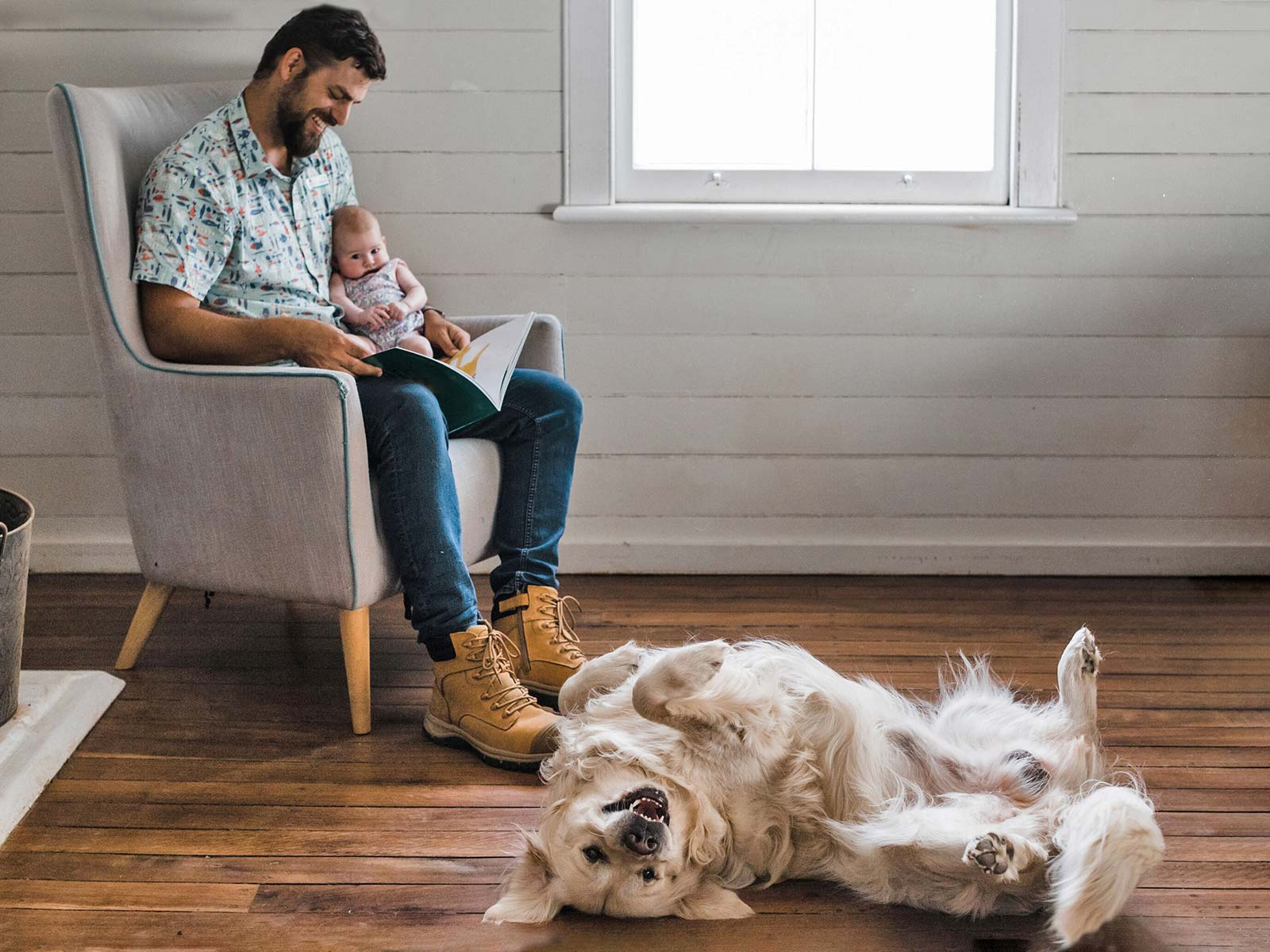 Father holds baby while reading a book, their golden retriever playfully lays on its back by their feet