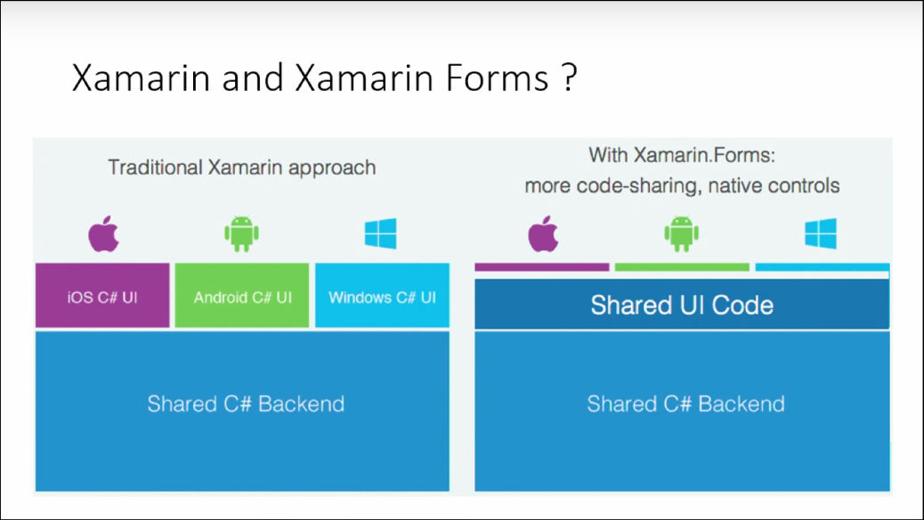 Introduction to Xamarin Forms Custom Renderers