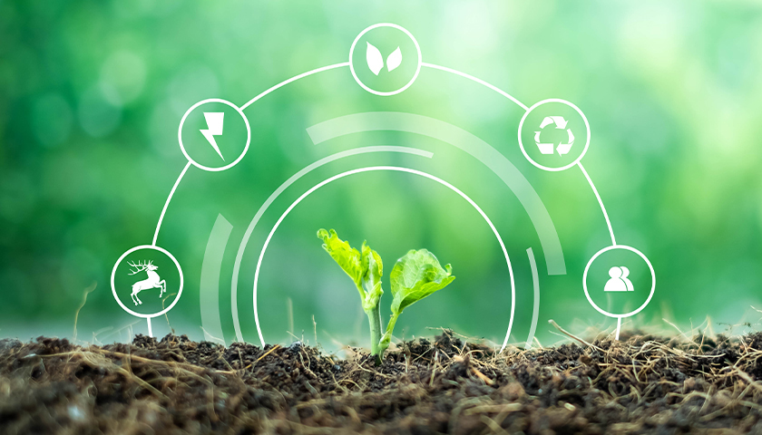 Imagem de capa Tecnologia orgânica protege soja e torna lavouras sustentáveis
