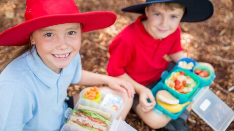 Primary school children eating the healthy food from their lunchbox
