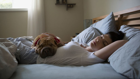 A woman and her dog sleeping on a bed