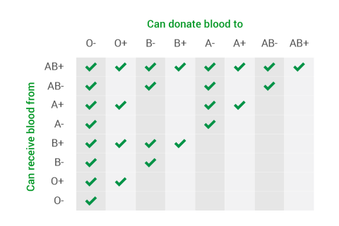 An infographic explaining who can receive and donate blood according to different blood types