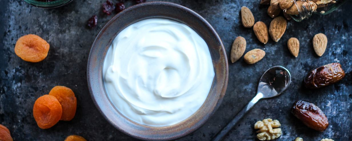 Greek Yogurt 1 header copy
