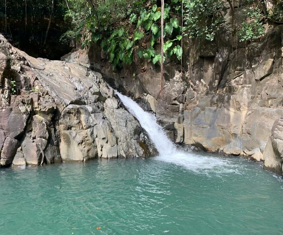 Saut d'Acomat - Cascades Guadeloupe