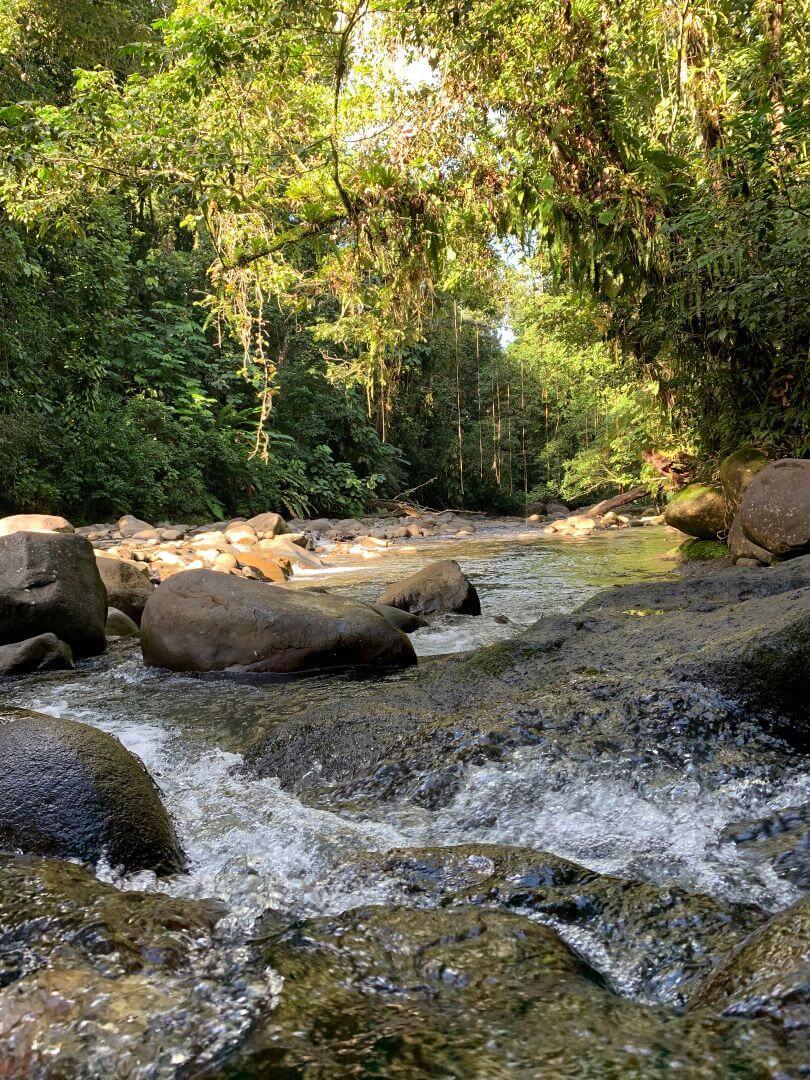Rivière Corossol - Cascade aux Ecrevisses - Guadeloupe