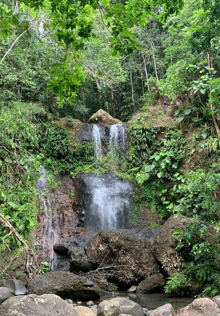 Saut des Trois Cornes - Cascade Guadeloupe