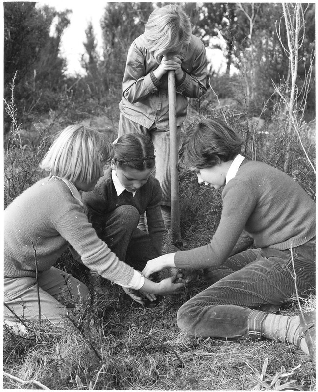 four children planting a tree
